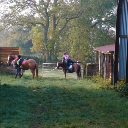 Horse Riding at Upper House Farm Self Catering Accommodation in Craven Arms Shropshire UK